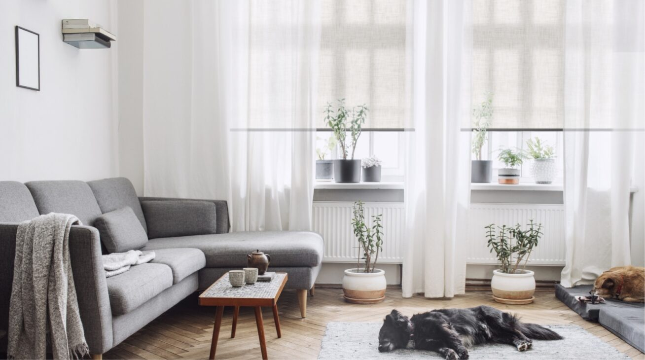 interior-products